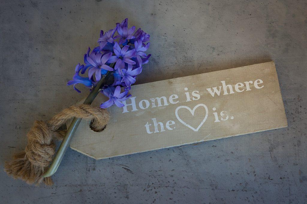 hyacinth-1369537_1280